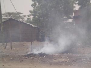 Burning waste2